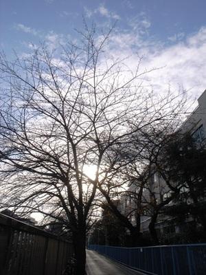 2014.12.16 -02.JPG